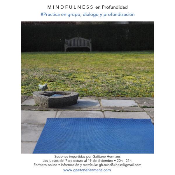 Mindfulness en profundidad